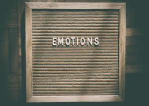Principles of Emotions